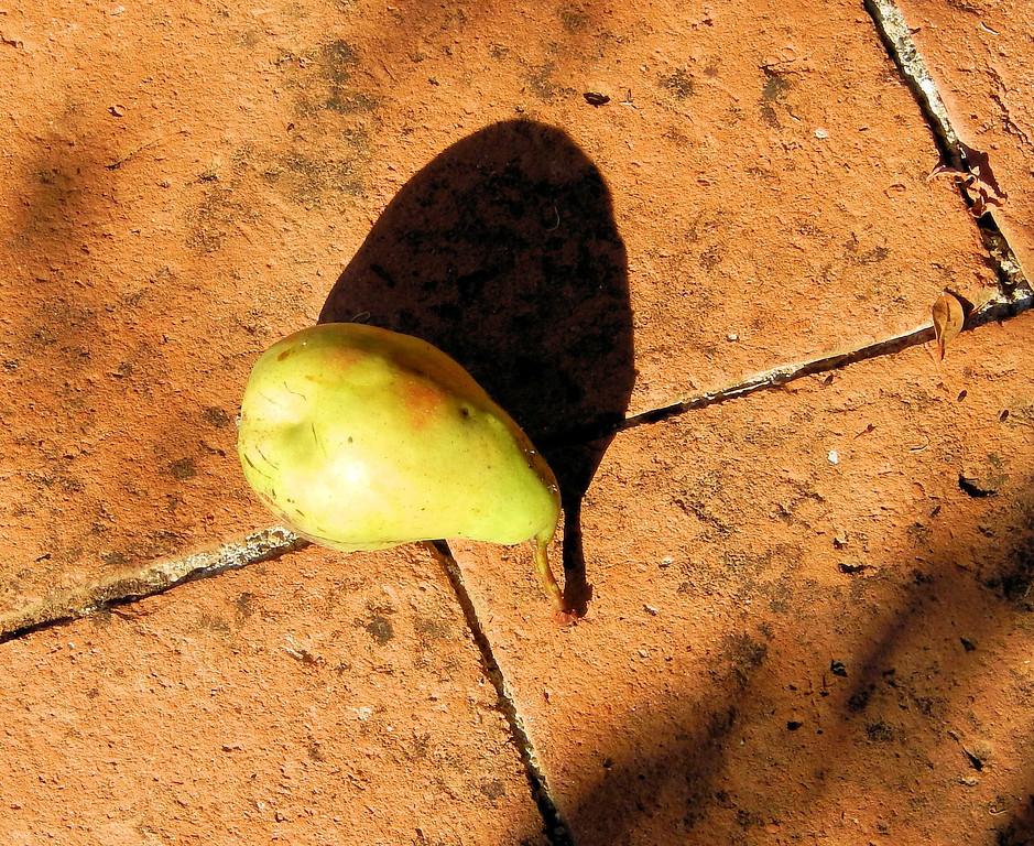 Free Range Pear