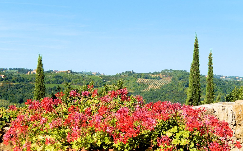 View With Geraniums