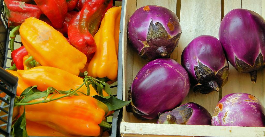 Peppers & Eggplants
